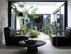 Piet Boon Styling by Karin Meyn | Black in contrast with the green courtyard