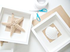 Wall shell art easy to make in a shallow shadow box.