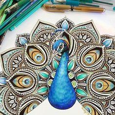 Hoje é um BOM DIA para ter um ÓTIMO DIA!  Lindo pavão @kellylahar _______________________________________________ ↪ Use #lostoceancolors, e compartilhe seus desenhos ou via Direct!↩  Siga o IG: @lostoceancolors