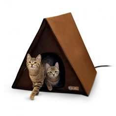 Home & Garden Cat Supplies Temperate Foldable Cat Bed Cat Play Tent Hammocks Sleep Bed Mattress Kitten Mat With Balls Funny Pet Toys Pet Supplies