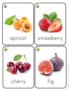 Fruit + Vegetable Flashcards – you clever monkey Different Fruits, Different Vegetables, Fruits And Vegetables, Food Flashcards, Flashcards For Toddlers, English Lessons For Kids, Kids English, Healthy Prepared Meals, Colors For Toddlers