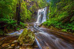 Tarkine Falls