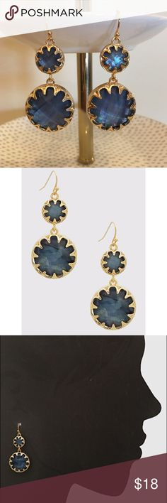 "Double Round Resin Drop Earrings Brand new Double Round Resin Drop Earrings in blue and gold colors. Length 2"". Nickel and lead free. Boutique Jewelry Earrings"