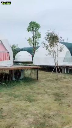 offer Geodesic dome tents range in diameter from meters. Geodesic dome tents are used in large exhibitions, celebrations, outdoor events, Greenhouse and outdoor camp lodges. Underground Garden, Eco Garden, Dome Homes, Dome Tent, Geodesic Dome, Travel Tours, Outdoor Events, Tour Eiffel, Empire State Building