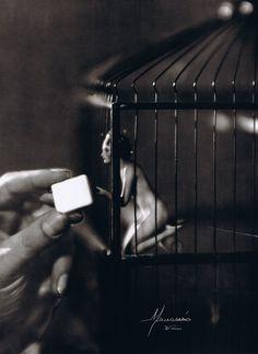 My Little Bird, 1929  Photographers: Manassé