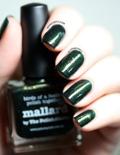 piCture pOlish #ManiMonday: Mallard - Swatches, Review, and Tape Nail Art