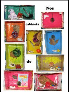 Cabinets de curiosités chez MissC Art Ideas, Preschool, Creations, Kid Garden, Kindergarten, Preschools, Kindergarten Center Management