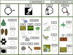 Pre School, Finland, Kindergarten, Workshop, Weaving, Diagram, Shapes, Blue Prints, Atelier