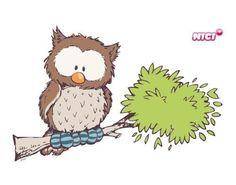 Owl Nici Teddy, Tattoo Painting, Fox Crafts, Owl Classroom, Beautiful Owl, Tatty Teddy, Cute Teddy Bears, Forest Friends, Owl Art
