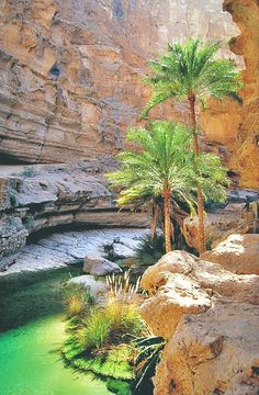 The cool, terraced pools of Wadi Shab, Oman were home to the Red Bull Cliff Diving World Series in 2012.