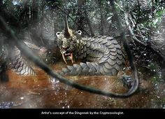 The Dingonek is a cryptid seen in the rivers and lakes of western Africa's Congolese jungles. At the Brackfontein Ridge in South Africa is a cave painting of an unknown creature that fits the description of the Dingonek, right down to its walrus-like tusks. It has been described as 12-feet in length, with a square head, a long horn, saber-like canines and a tail complete with a bony, dart-like appendage that secretes a deadly poison. This creature is also covered in a scaly, mottled…