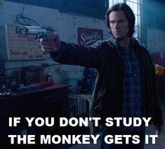 Just study......