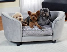 Sit, Stay, Style - Playful Pet Accessories - Ends 3/2 on Joss and Main