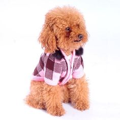 d3501bf3f062 29 Best Dog Apparel images