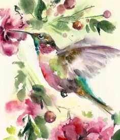 Hummingbird Watercolor  Original Watercolor Painting  by CanotStop