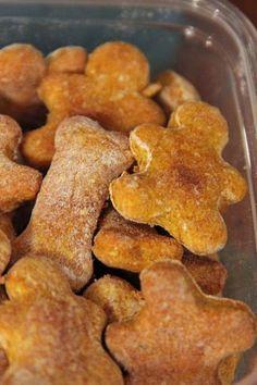 Pumpkin Dog Treats: 2 eggs 1/2 cup canned pumpkin 2 Tbsp dry milk 1/4 tsp sea salt 2 1/2 cups whole wheat flour