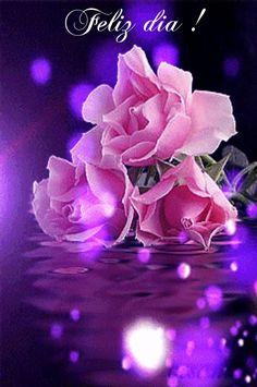 224 Besten Blumen Bilder Auf Pinterest Beautiful Flowers Plants