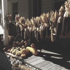 Primitive fall on the porch..