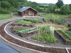 61 Backyard Garden Design Ideas - Home/Decor/Diy/Design Garden Projects, Garden Design, Community Gardening, Planting Flowers, Plants, Permaculture Gardening, Garden Beds, Garden Layout, Backyard