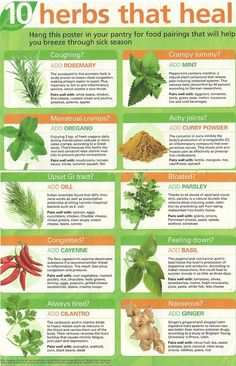 This Pin was discovered by Ladies News. Discover (and save!) your own Pins on Pinterest. | See more about herbs.