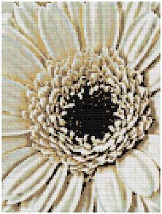 White Gerbera Daisy - a Counted Cross Stitch Pattern by WooHooCrossStitch on Etsy