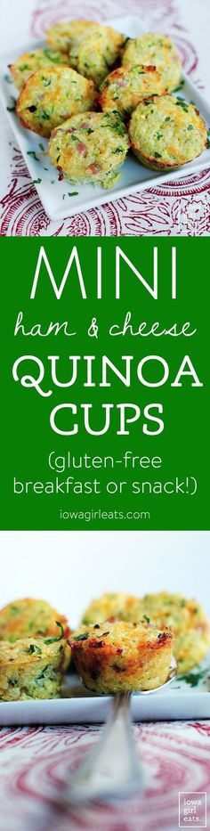Mini Ham and Cheese Quinoa Cups are poppable, gluten-free, and packed with protein. The perfect breakfast or snack! | iowagirleats.com