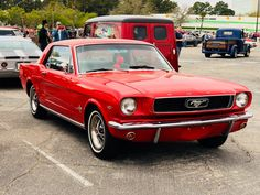 Used 1966 Ford Mustang -RESTORED CONDITION FACTORY C CODE - SEE VIDEO | Mundelein, IL