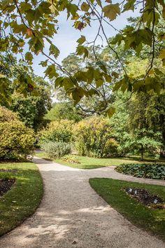 Botanische Garten   STADTBEKANNT   Das Wiener Online Magazin Parks, Heart Of Europe, Concert Hall, Vienna, Modern Architecture, Austria, Sidewalk, Scene, Lifestyle