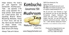 Kombucha Tea 50 X Concentrate Kombuchal 5 fl oz Organic Kombucha, Kombucha Tea, Kombucha Mushroom, Sparkling Mineral Water, Mushroom Tea, Fermented Tea, Cold Pressed Oil, Acetic Acid, Thing 1