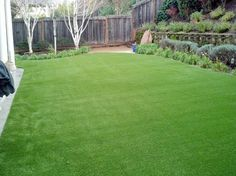 Visit us on the web at http://www.globalsynturf.com. Like us on Facebook: https://www.facebook.com/globalsynturf  Follow us on Twitter: https://twitter.com/globalsynturf  Follow us on HomeTalk: http://www.hometalk.com/globalsynturf Follow us on Houzz: www.houzz.com/pro/globalsynturf/ Add us to your Google+ circles: https://www.google.com/+Globalsynturfcom  #artificialgrass #artificialturf #syntheticgrass #syntheticturf