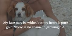 - 25 Heart Touching Quotes About Old Dogs - EnkiQuotes