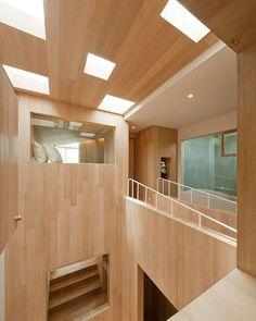 Bear House by Onion
