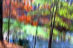 Fall Colors - Vertical Pan - IMG_8404-1000 by Bahman Farzad, via Flickr
