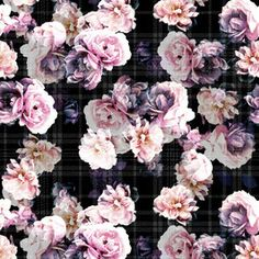 View Roses With Plaid Floral Design by Elizabeth-Jane. Available in Seamless Repeat Royalty-Free. Elizabeth Jane, Small Rose, Rose Wallpaper, Dark Backgrounds, Flower Wall, Flower Patterns, Floral Design, Floral Wreath, Plaid
