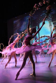 36 Best DANCING QUEEN images | Ballerinas, Ballet dance, Ballet