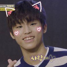 New Boyfriend, Happy Pills, Jung Woo, Cute Panda, Treasure Boxes, Headers, Handsome, Icons, Kpop