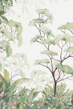 home wallpaper Forest wallpaper (detail) by Maison Kids Room Wallpaper, Home Wallpaper, Kindergarten Wallpaper, Forest Wallpaper, Wallpaper Jungle, Botanical Wallpaper, Botanical Wall Art, Little Girl Rooms, Art Wall Kids
