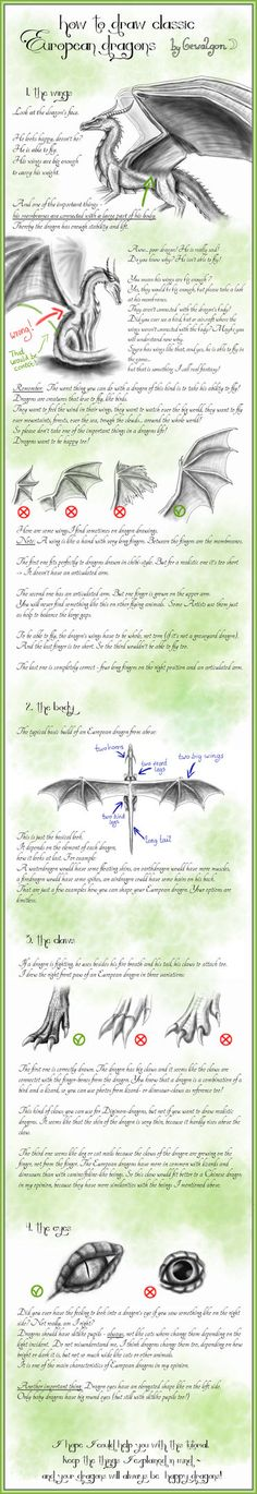 How to draw Classic European Dragons - by Gewalgon by Gewalgon on deviantART