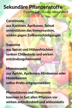Sekundäre Pflanzenstoffe wie Carotinoide, Saponine, Monoterpene, Phenolsäuren, Flavonoide