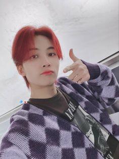 210430 Seungkwan, Wonwoo, Day Before Yesterday, Bozo, Jeonghan Seventeen, Happy Today, Pledis 17, Pledis Entertainment, Love Letters