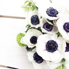 En ce moment, je suis un-peu-beaucoup-focalisée sur les fleurs... Surtout les tulipes, anémones et renoncules clowns #myfavoritesflowers (je passe des messages subliminaux par la même occasion pour mon anniv'. M'en voulez pas hein ) Et merci pour vos adorables messages! Ça me fait toujours plaisir de les lire et j'essaie dès que je peux d'y répondre!