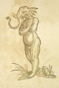 """""""Puer capite elephantino"""". - Ulisse Aldrovandi: Monstrorum historia. Bologna, N. Tebaldinus 1642 und Serpentum et Draconum historia. Bologna, C.Ferronius 1640"""