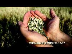 Biblische Feste (5) Pfingsten