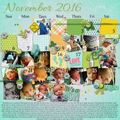 The day by day happenings of November 2016, the month my son Logan was born. I try and take a picture of him everyday. Used a Monthly Template by Dae Designs and Baby on Board kit by Kristin Aagard.
