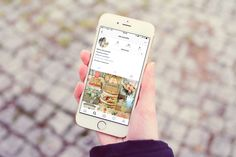 instagram-oui-cocotte