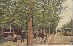 Frederiksberg Allé med Sporvogne
