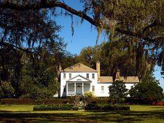 Harrietta Plantation - Charleston County, South Carolina (Rice)