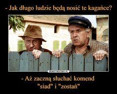 Funny Mems, Jokes, Baseball Cards, Sports, Pictures, Polish, Funny Memes, Hs Sports, Photos