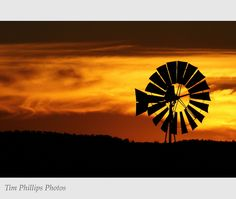 Wind mills - Flickr: Search
