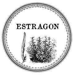 estragon Papel Vintage, Wood Transfer, Custom Stamps, Decoupage, Decorative Plates, Typography, Printables, Image Transfers, Diy
